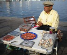 venditore di conchiglie e opercoli